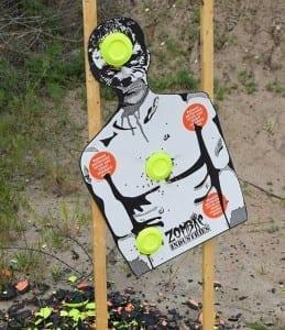 Zombie Pandemic Target