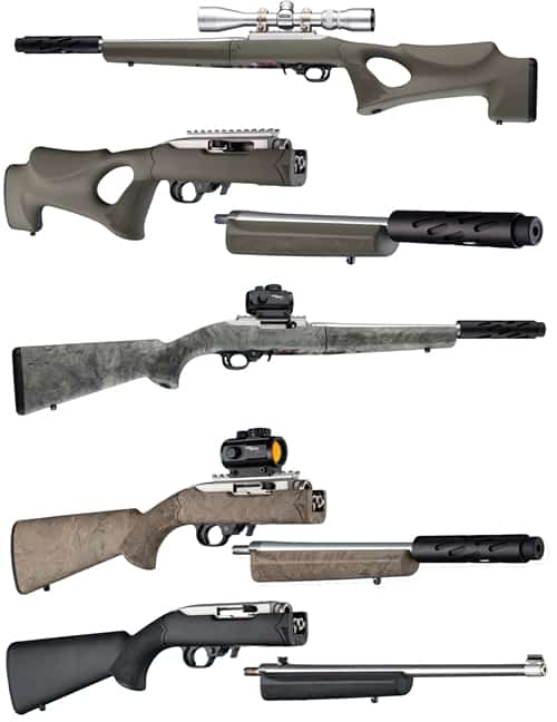 Ruger 10 22 takedown stock options