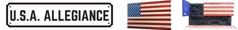 USA Allegiance